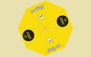 mdp_umbrella